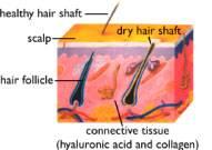 Ácido Hialurónico en el pelo