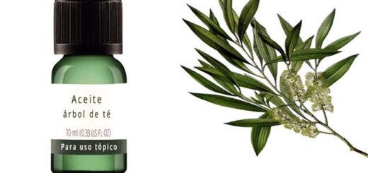 aceite de arbol de te para el acne, como aplicar