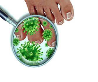 Resultado de imagen de usos del aceite del arbol del te