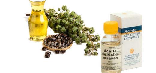 Propiedades y beneficios del aceite de ricino