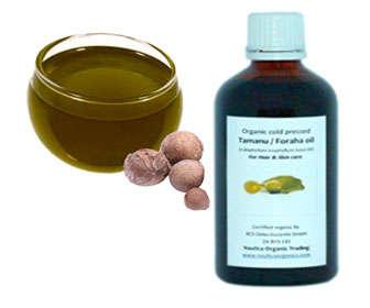 aceite de tamanu para el acné en la espalda