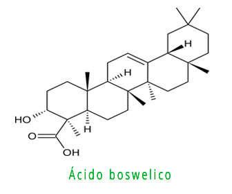 Estructura del ácido boswelico y dosis de boswellia serrata, carterii, sacra