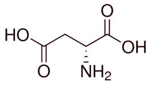 acido d aspartico estructura