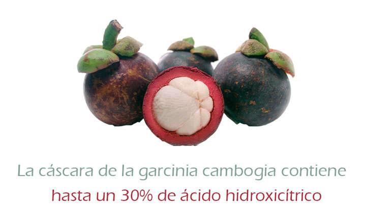 Garcinia cambogia premium cleanse free trial photo 4