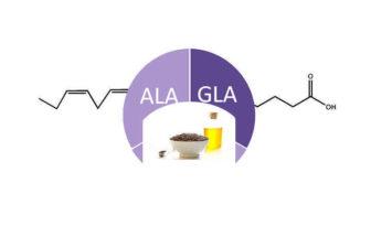 Diferencias entre ácido alfa linolénico y gamma linolénico