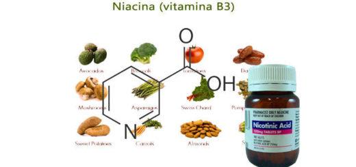 acido nicotinico presentacion, aplicaciones y usos