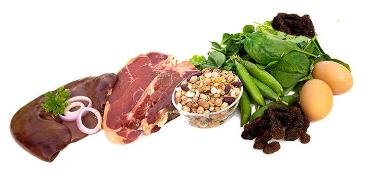Alimentos ricos en hierro hemo y no hemo - Alimentos con probioticos y prebioticos ...