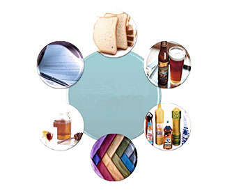 amilasa enzima usos medicinales e industriales