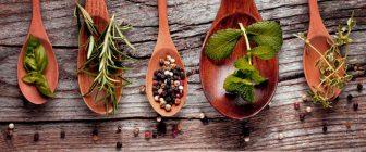 antiinflamatorios naturales mas potentes