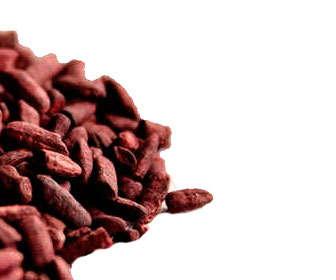 arkosterol levadura roja de arroz