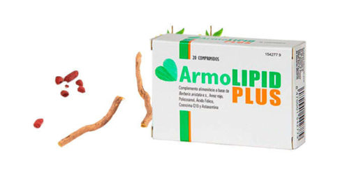armolipid plus composición
