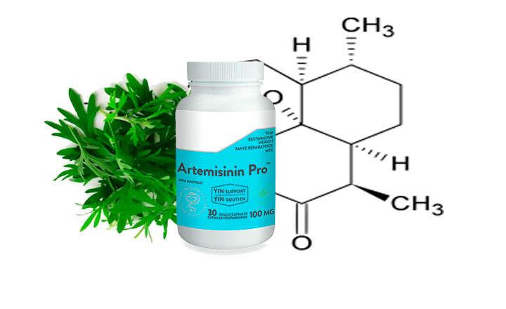artemisinina medicinal