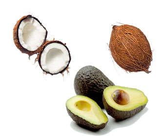 Aguacate o avocado y coco
