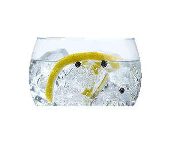 gin tonic con bayas de enebro