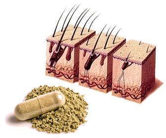 capsulas de beta-sitosterol para la alopecia