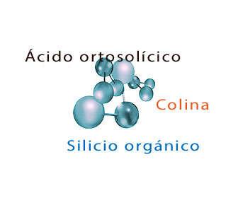 biosil composicion