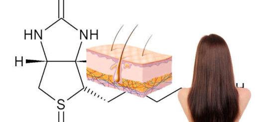 biotina que es la vitamina H o B6 y B7