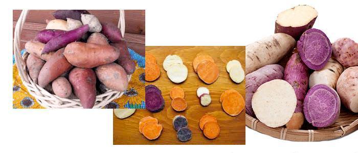 Información y valor nutricional del boniato