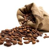 cacao propiedades y beneficios