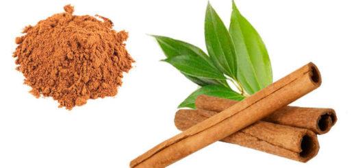canela propiedades medicinales y curativas