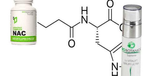 propiedades y beneficios de carnosina