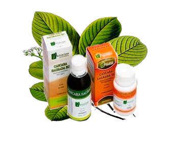 C scara sagrada para adelgazar estre imiento propiedades - Medicamento para ir al bano ...
