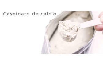 caseinato de calcio proteina
