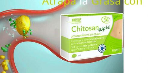 chitosan vegetal