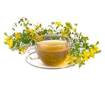 Como preparar un té damiana