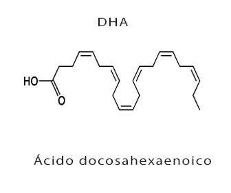 dha o acido docosahexaenoico