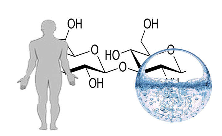 ácido hialurónico donde se encuentra