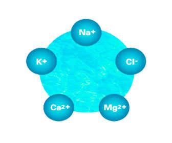 electrolitos del agua