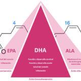 relación entre epa, dha y omega 3