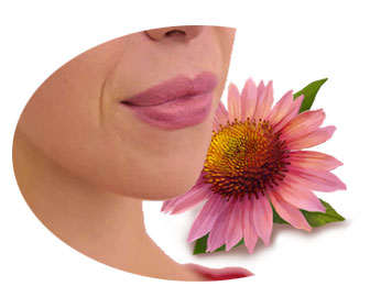 equinacea para curar el herpes labial