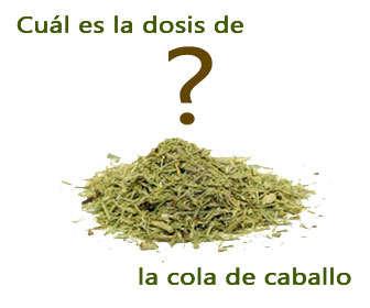 cantidad de equisetum arvense o dosis de la cola de caballo