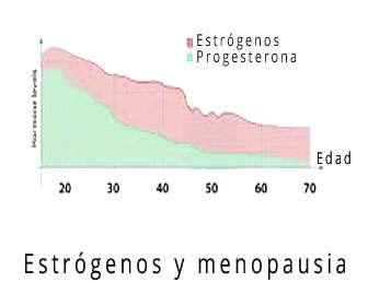 estrogenos y menopausia