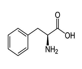 Función de fenilalanina y estructura quimica