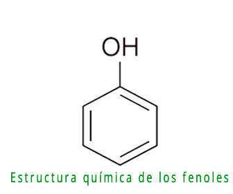 Fórmula de los fenoles y estructura química