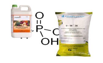 ¿el fosfito de potasio está prohibido?