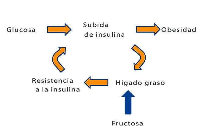 difrencias entre fructosa y glucosa para la diabetes