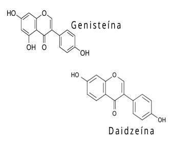 genisteina y daidzeina