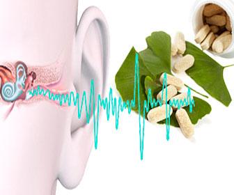 Tratar con ginkgo biloba tinnitus