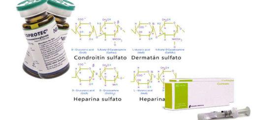 glicosaminoglicanos que son