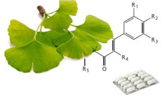 glucosidos flavonol y lactonas terpenicas