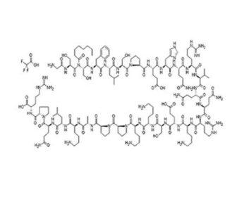 grelina estructura quimica y propiedades de ghrelina