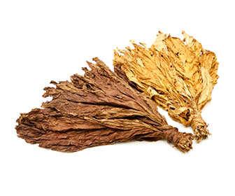 hojas de tabaco, síndrome de abstinencia a la nicotina