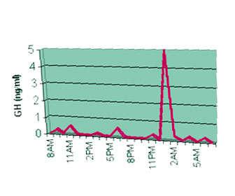 Segregación de la hormona de crecimiento durante el ciclo diario