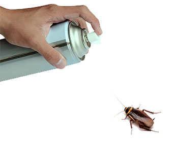 insecticida para eliminar cucarachas