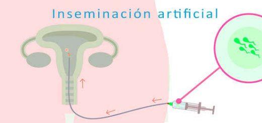 inseminacion artificial pasos