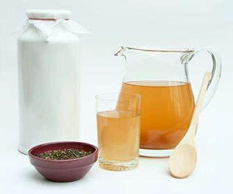 Ingredientes para hacer té kombucha